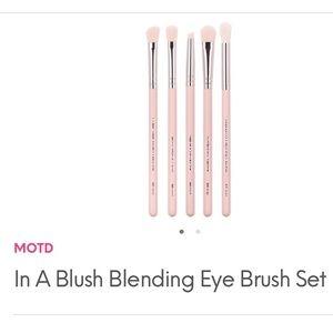 MOTD 5 PINK BRUSH SET A Blush Blending Eye Set